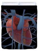 3d Rendering Of Human Heart Duvet Cover