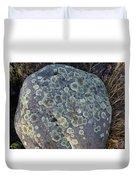 3da5793-dc Lichen On Rock Duvet Cover
