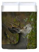 3x3 Buck Mule Deer-signed-#9716 Duvet Cover