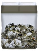 4 And 20 Blackbirds Duvet Cover