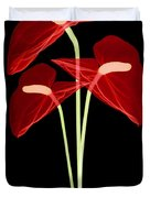 Anthurium Flowers, X-ray Duvet Cover