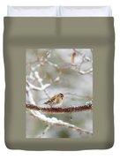 Common Redpoll Duvet Cover