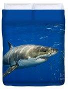 Great White Shark Duvet Cover