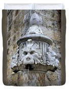 Public Fountain In Dubrovnik Croatia Duvet Cover