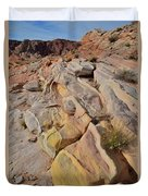 Rainbow Of Color In Valley Of Fire Duvet Cover