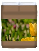 Tulips At Ottawa Tulips Festival Duvet Cover