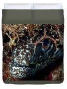 White Spotted Eel Duvet Cover