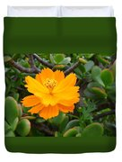 Australia - Cosmos Carpet Yellow Flower Duvet Cover