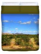 Sonora Desert Duvet Cover