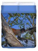 48- Capuchin Monkey Duvet Cover
