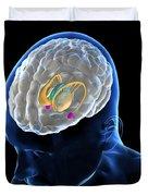 Anatomy Of The Brain Duvet Cover