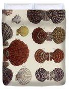 Aquatic Animals - Seafood - Shells - Mussels Duvet Cover