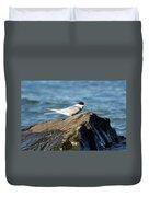 Arctic Tern Duvet Cover