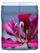 Bauhinia Purpurea - Hawaiian Orchid Tree Duvet Cover by Sharon Mau