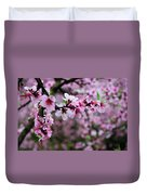 Blossoming Peach Flowers Closeup Duvet Cover