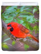 Cardinal Birds Hanging Out On A Tree Duvet Cover