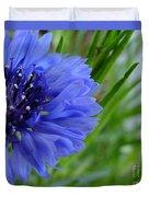 Centaurea Cyanus 2 Duvet Cover