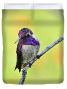 Costas Hummingbird  Duvet Cover
