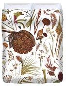 Herbarium Specimen Duvet Cover