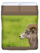 Rocky Mountain Big Horned Sheep Duvet Cover