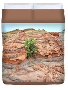 Sandstone Color In Valley Of Fire Duvet Cover