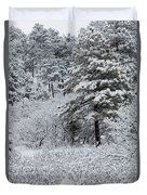 Snowstorm In The Pike National Forest Duvet Cover