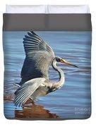 Tri Colored Heron Duvet Cover