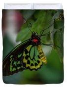 5156- Butterfly Duvet Cover