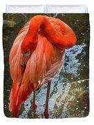 5182- Flamingo Duvet Cover