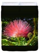 Australia - Caliandra Red Flower Duvet Cover