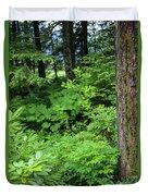 Alaska_00006 Duvet Cover