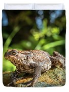 Amphibian, Common British Toad / Frog Duvet Cover