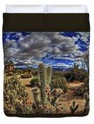 Anza-borrego Desert State Park Duvet Cover