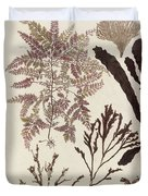 Aquatic Animals - Seafood - Algae - Seaplants - Coral Duvet Cover