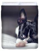 Boston Terrier Puppy Duvet Cover