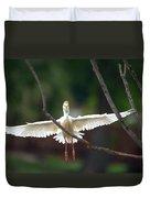 Cattle Egret In Flight Portrait Duvet Cover