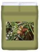 Clearwing Hummingbird Moth Duvet Cover