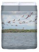 Colombia Sanctuary Of Flamingos Near Riohacha Duvet Cover