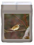 Eurasian Tree Sparrow Duvet Cover