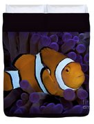 False Ocellaris Clownfish In Its Host Duvet Cover