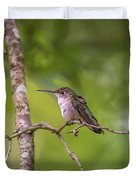 Hummingbird Found In Wild Nature On Sunny Day Duvet Cover
