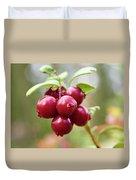 Lingonberry Duvet Cover