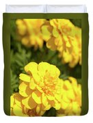 Tagetes Patula Fully Bloomed French Marigold At Garden In Octob Duvet Cover