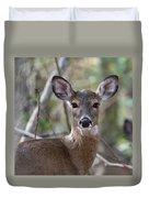 White Tailed Deer Smithtown New York Duvet Cover