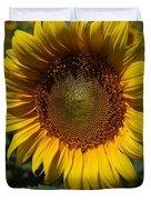 Sunflower Series Duvet Cover