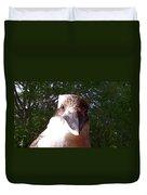 Australia - Kookaburra Stickybeak Duvet Cover