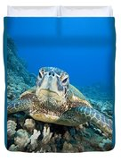 Hawaii, Green Sea Turtle Duvet Cover