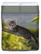 Kitten In A Tree Duvet Cover