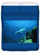 Bottlenose Dolphin Tursiops Truncatus Duvet Cover
