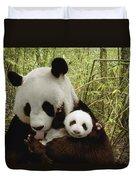 Giant Panda Ailuropoda Melanoleuca Duvet Cover by Katherine Feng